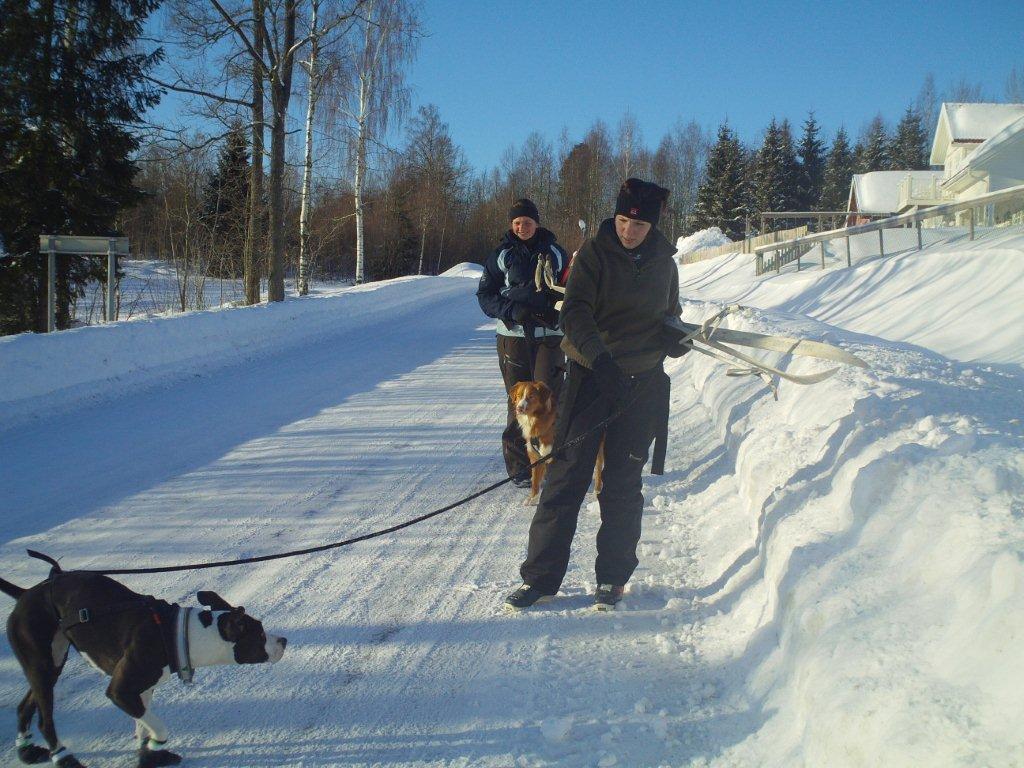 Skitur 034