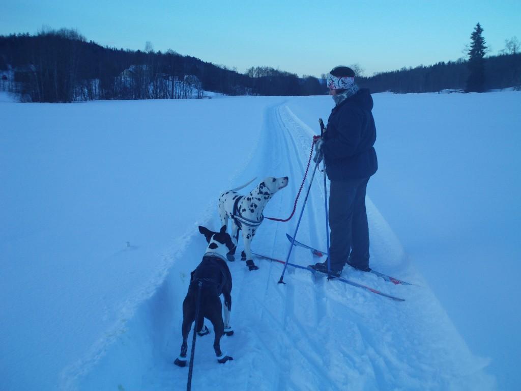 Skitur 049